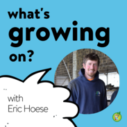 Eric Hoese