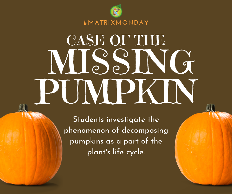 Case of the Missing Pumpkin