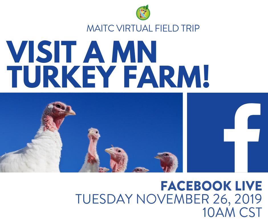 virtual field trip: Meadowlark Turkey Farm