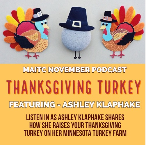 Turkey podcast
