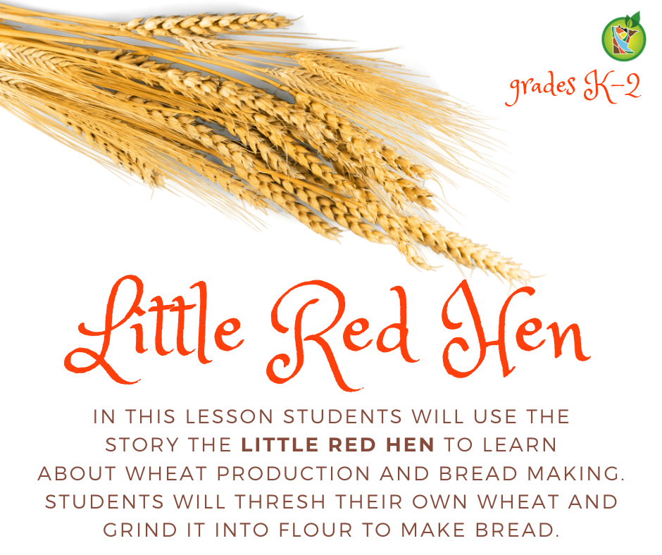 Little Red Hen lesson
