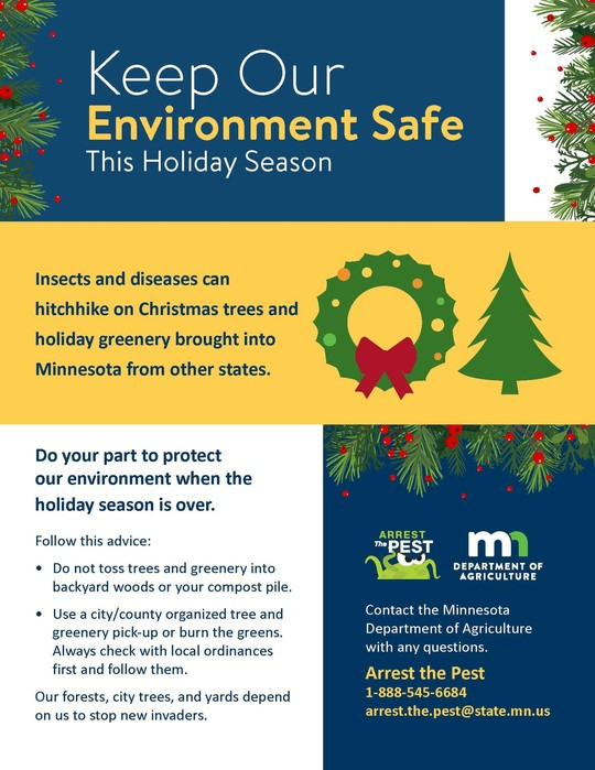 Keep Our Environment Safe This Holiday Season poster