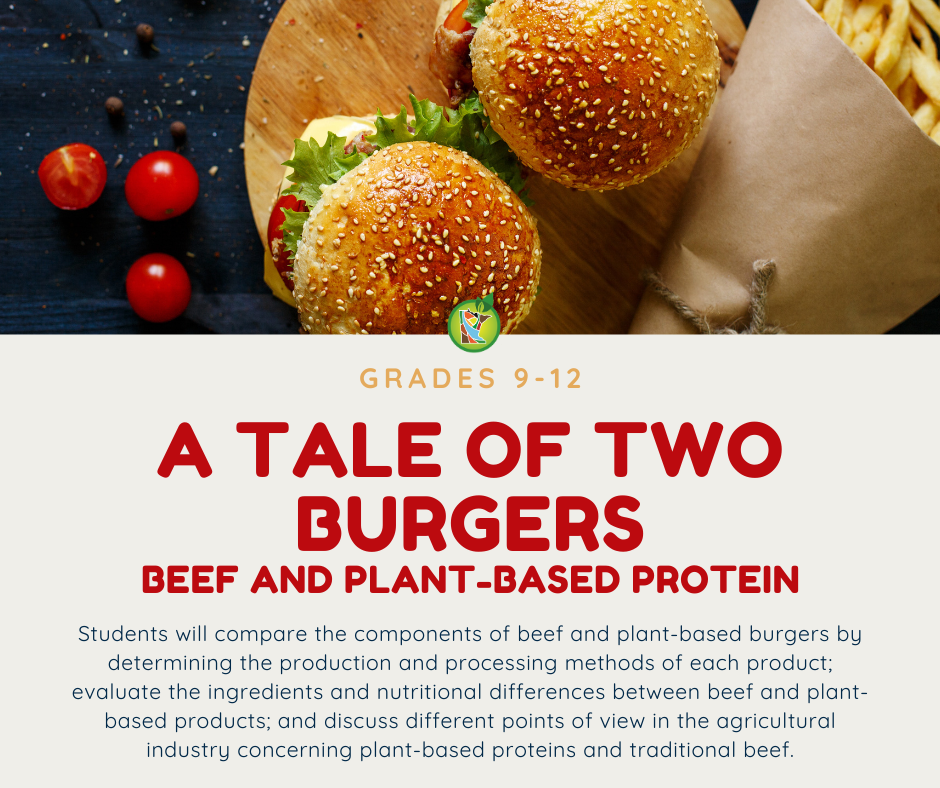 A Tale of Two Burgers Lesson Plan