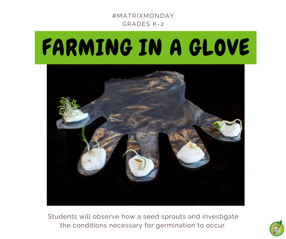farming in a glove