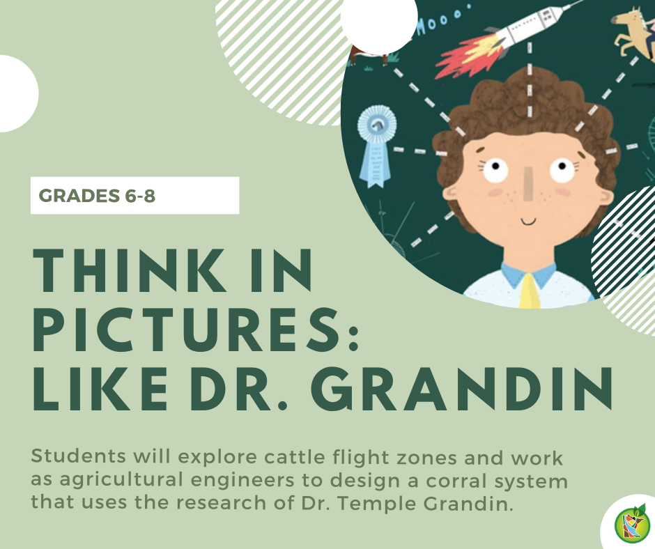 Think in Pictures like Dr. Grandin