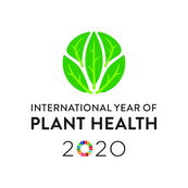 International Year of Plant Health logo