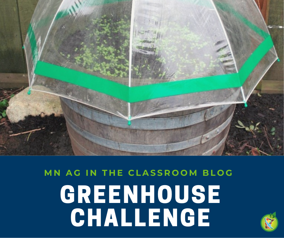 Greenhouse Challenge Blog