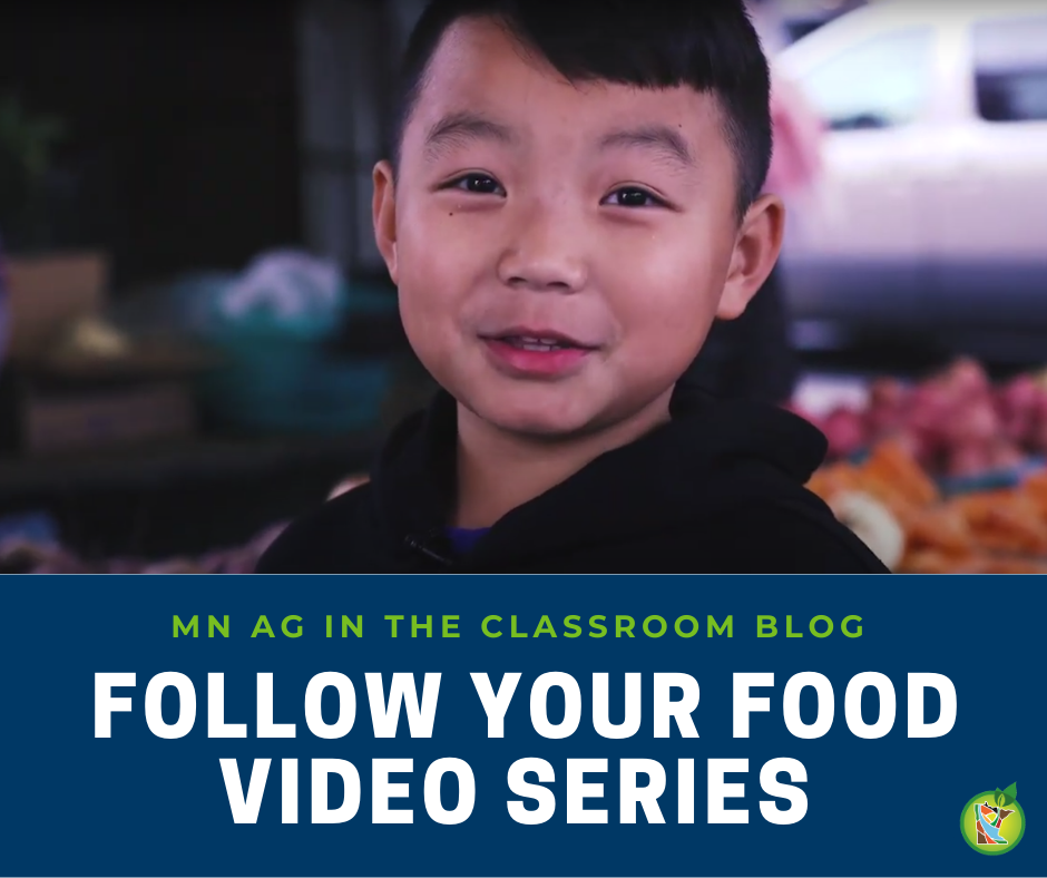 Follow Your Food Videos Blog Post