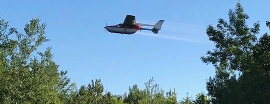 Gypsy moth treatment plane