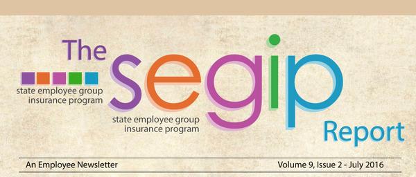 The SEGIP report banner image