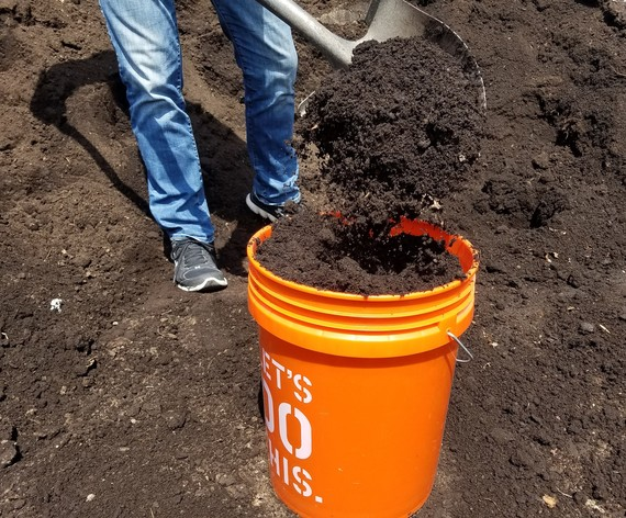 A resident shovels compost into a bucket