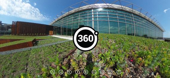 360 gr