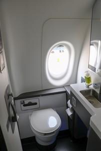 a220 bathroom window