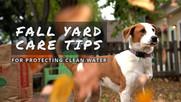 Fall Yard Care video thumbnail.