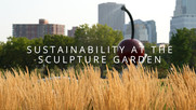 Sculpture Garden video thumbnail image.