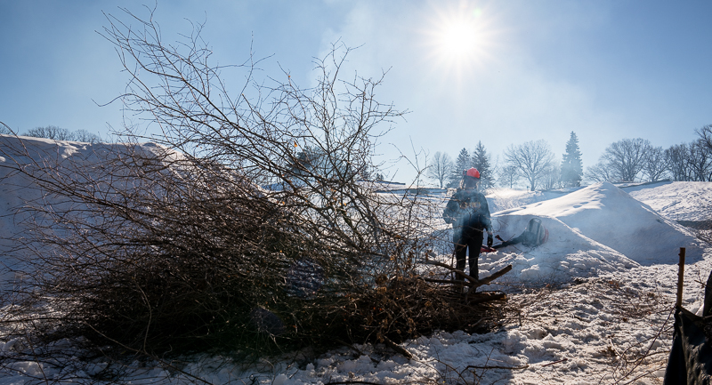 Burning a pile of buckthorn at Columbia Golf Course.
