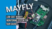Mayfly video thumbnail image.