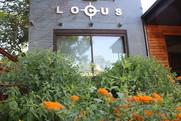 Locus Architecture raingarden and building.