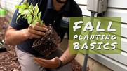 Fall Planting Video Thumbnail