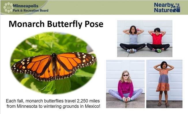 nature yoga - butterfly pose