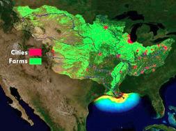 gulf hypoxia map