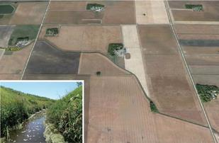 Lower Minnesota watershed: Poor buffers, poor aquatic life