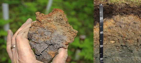 Mpca ssts bulletin for Describe soil