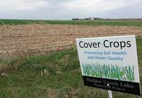 cover crop iowa