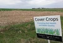 cover crop iowa