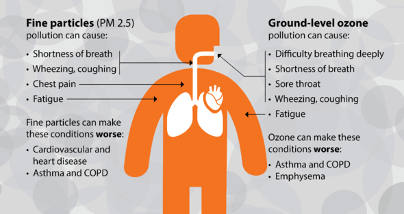 Graphic from new website showing health impacts of air quality