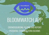 Bloomwatch
