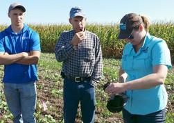crop consultants