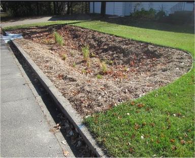 Bioretention media