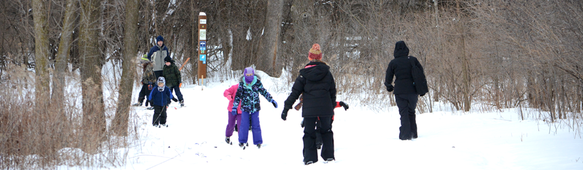 Kids crossing country skiing at Tamarack Nature Center.