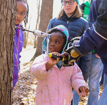 Sap to Syrup event at Tamarack Nature Center.