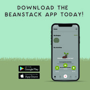 Download the beanstack app