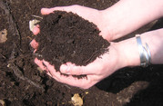 Compost in Hand