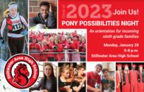 pony possibilities