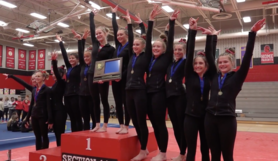 gymnastics team section champs 2019