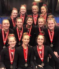 gymnastics team 2019