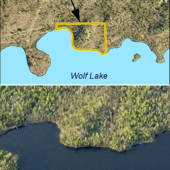 Tract 51 - Wolf Lake