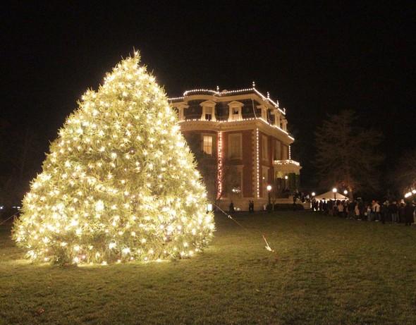governor's mansion Christmas tree