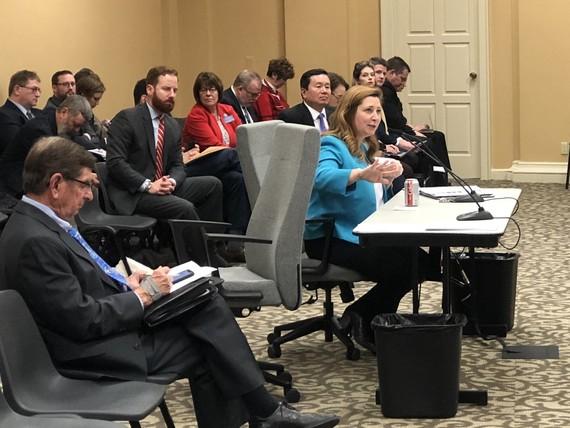 Zora testifies hearing