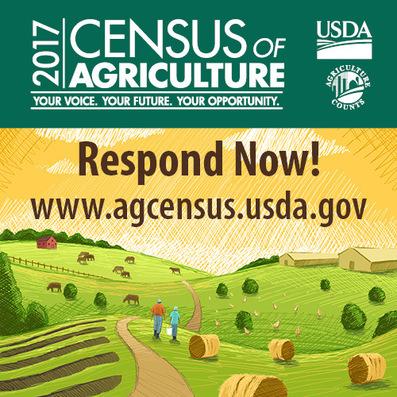 CensusRespondNow