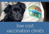 Low Cost Vaccines