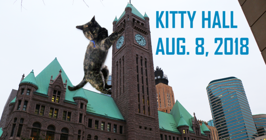 Kitty Hall Returns on August 8th