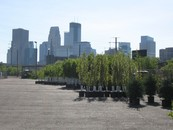 parking lot with trees to plant photo