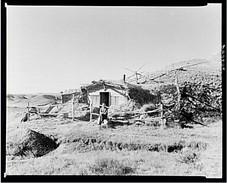 Hominy Thompson Shack, Sheridan County, MT 1937