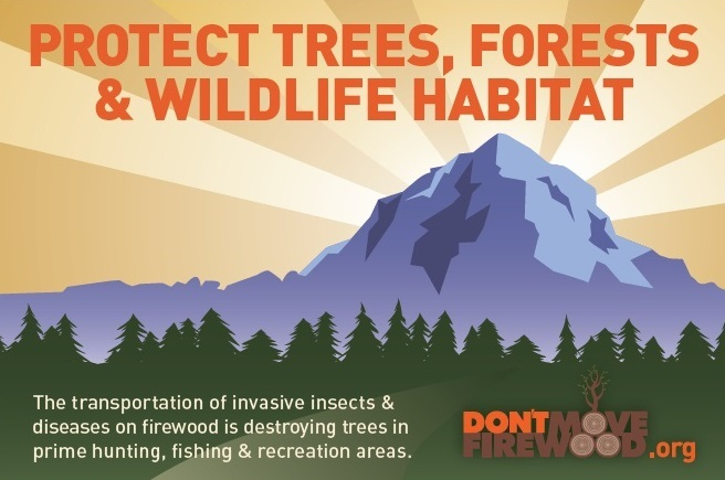 Protect, Trees, Forests & Wildlife Habitat