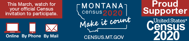 Census Email Banner